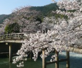 京都であなたにピッタリの学生マンションを探す方法